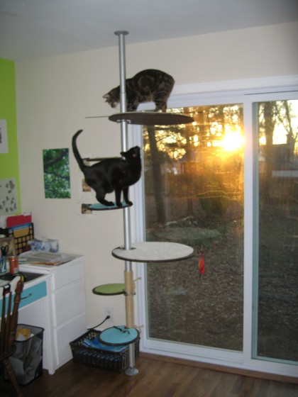 A modern cat tree jill carson - Modern cat tree ikea ...